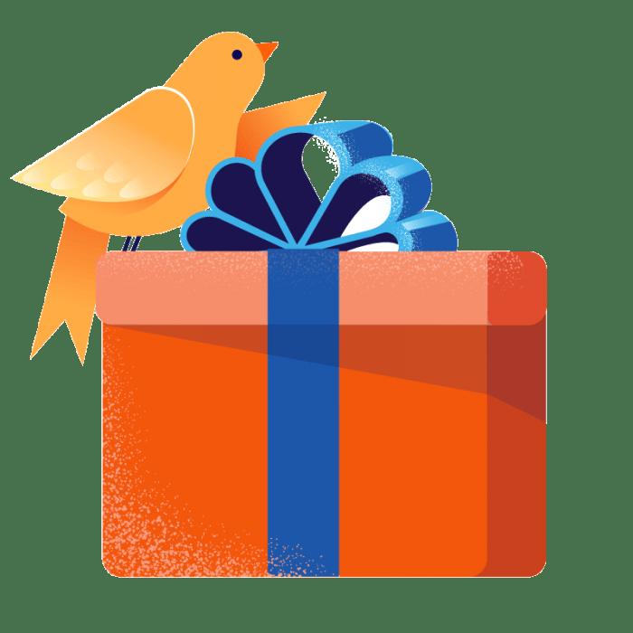 Olli-MailPoet-box